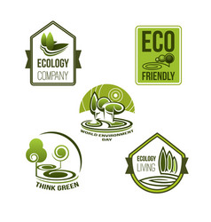 eco business and green living icon ecology design vector image