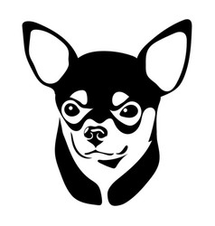 portrait of the chihuahua vector image