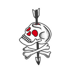 skull and bones pierced by an arrow vector image