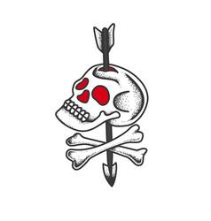 skull and bones pierced by an arrow vector image