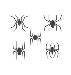 spider logo design vector image