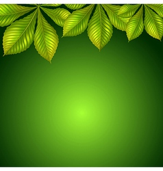 A green background vector