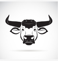 bull head on a white background wild animals vector image