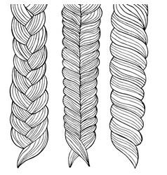 drawing of three braids hairstyle vector image