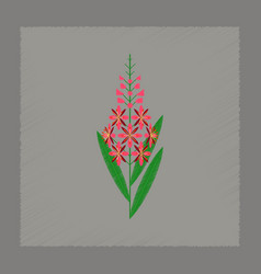 Flat shading style icon herbal chamerion vector