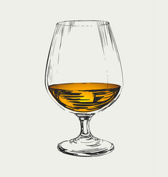 Glass of brandy drawing vector