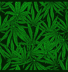 seamless pattern with cannabis leaves for vector image