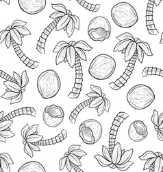 doodle palm coconut pattern seamless vector image vector image
