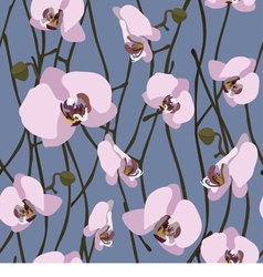 Seamless background from blossoming orchid vector image