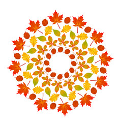 colored round autumn mandala with leaves vector image