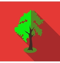 Fluffy tall tree icon flat style vector image vector image