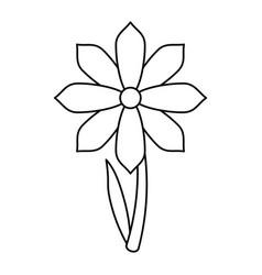 gerbera flower spring ornament thin line vector image