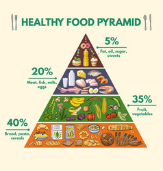 healthy food pyramid infographic pictures with vector image vector image