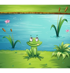 A hungry frog vector