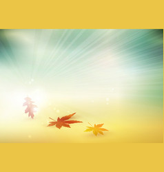 abstract autumn fall leaves blurry background vector image