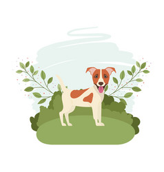 Cute jack russell rerrier dog with background vector
