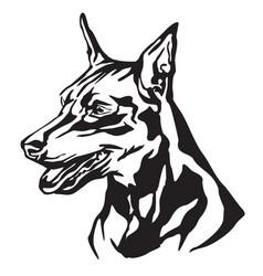 Decorative portrait dog miniature pinscher vector