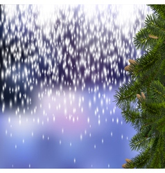 Festive Christmas background with branches of fir vector image