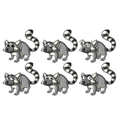 lemur with different emotions vector image
