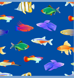 Varicoloured marine creatures seamless pattern vector
