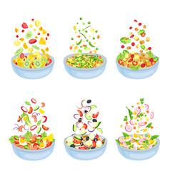 vegetable salad healthy vegetarian dish explosion vector image
