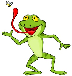 Frog catching fly vector image