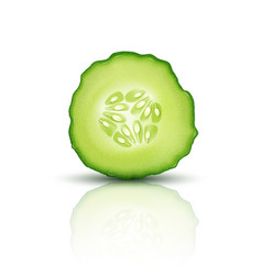 slice juicy cucumber isolated on white background vector image vector image