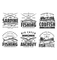 anchovy sardine and codfish fishing icons vector image