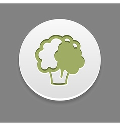 Cauliflower icon Vegetable vector