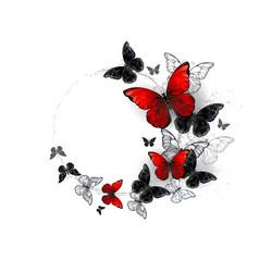 Flight black and red butterflies morpho vector