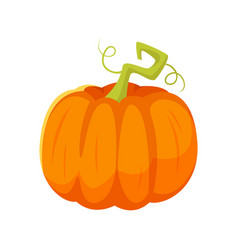 cartoon style of pumpkin vector image
