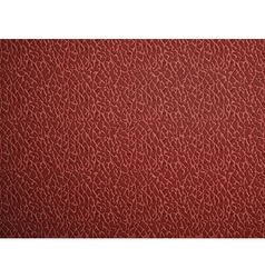 red leather Stock vector image vector image