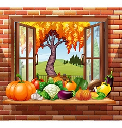 Fresh fruits and vegetables in the room vector image