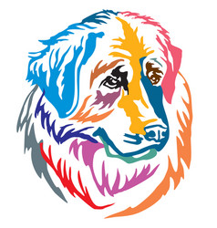 colorful decorative portrait of dog leonberger vector image