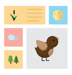 Flat icon nature set of cattail bird forest and vector