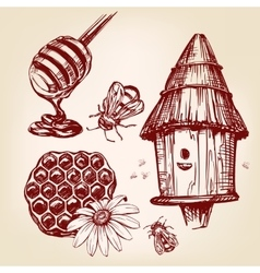 Honey elements set hand drawn llustration vector
