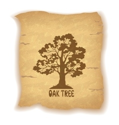 Oak Tree on Old Paper vector image