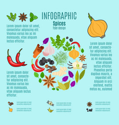 spices infographic design with cartoon icons vector image