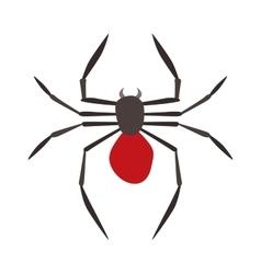 Spider Black Widow vector