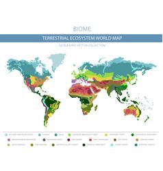 Terrestrial ecosystem world map biome world vector