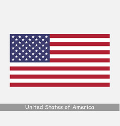 united states america usa national country flag vector image