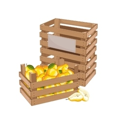 Wooden box full of pear isolated vector image