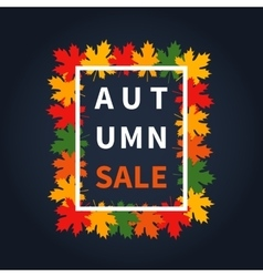Autumn fall sale vector image