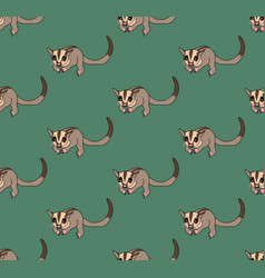 Cute sugar glider on green background vector