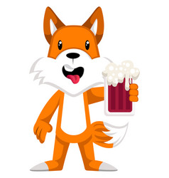 fox with beer on white background vector image