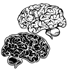 Human Brain sketch cartoon vector image