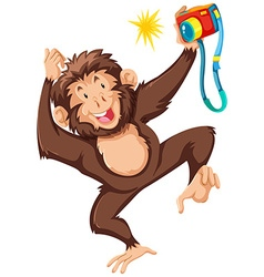 Monkey taking picture with camera vector image