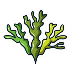seaweed icon cartoon style vector image