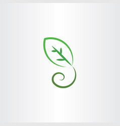 stylized green leaf icon vector image