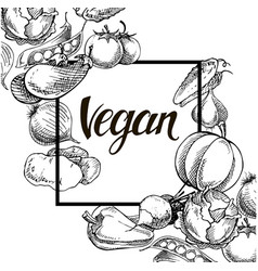 vegan food concept hand drawn vector image